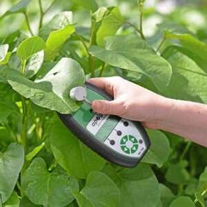 Leaf Sensors